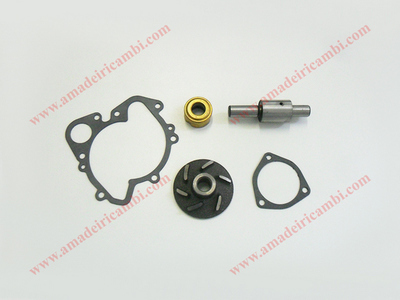 Kit revisione pompa acqua - Lancia Gamma